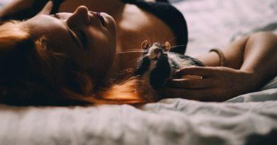 Animals People Adult Attractive  - freestocks-photos / Pixabay