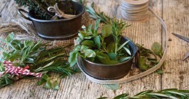 Spices Herbs Rosemary Marjoram  - RitaE / Pixabay