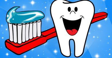 Tooth Toothbrush Toothpaste Dental  - Ray_Shrewsberry / Pixabay